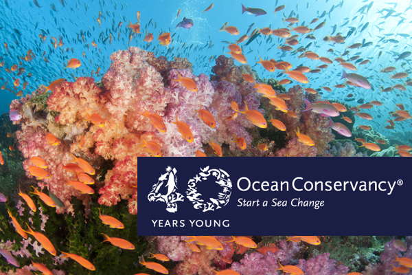 coral reef with 40th anniversary logo