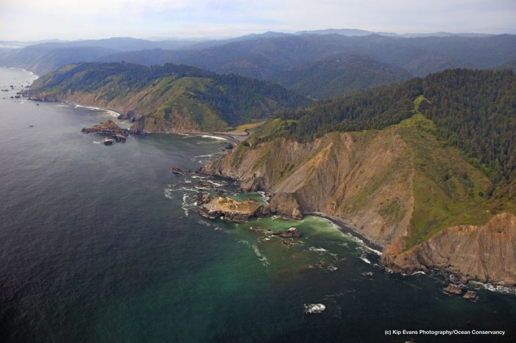 Aerial view of Double Cone Rock State Marine Conservation Area
