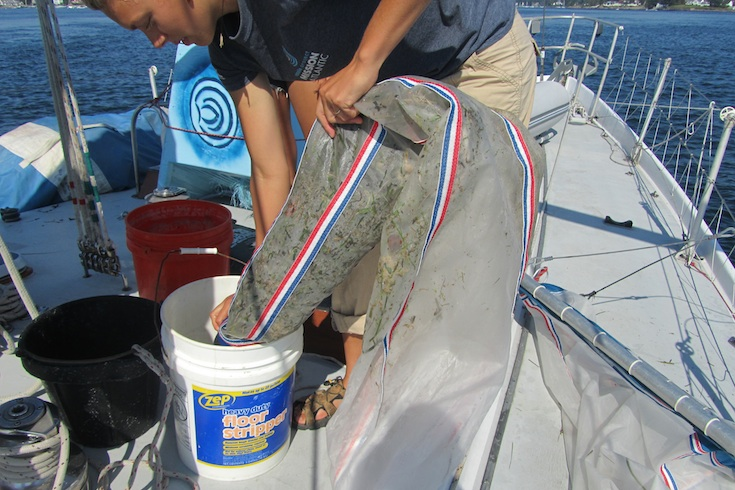 Scientist aboard American Promise empties a net full of marine debris